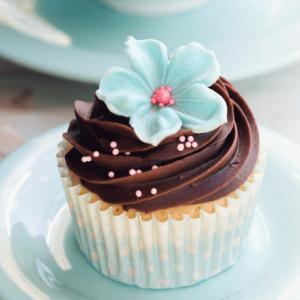 Cupcakes, Cakepops & Cookies